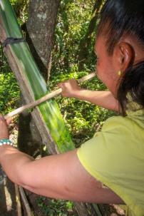 aus einer Palmpflanze werden Fasern für Seile gewonnen
