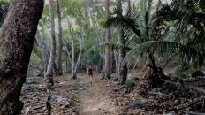 Wanderung bei Montezuma