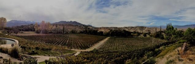 Weingut in der Nähe von Cachi